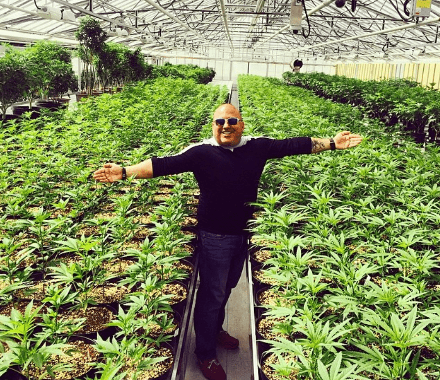 Andrew DeFrancesco in a sea of Aphria cannabis